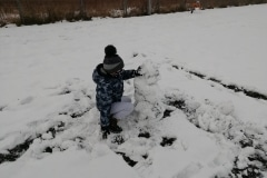 zima010